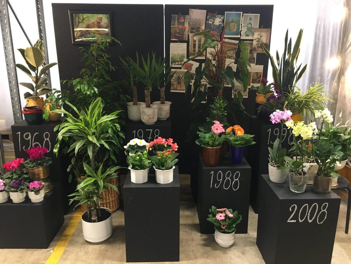 Blomsterfrämjandet 50 år