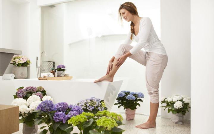 Växter får dig att må bättre